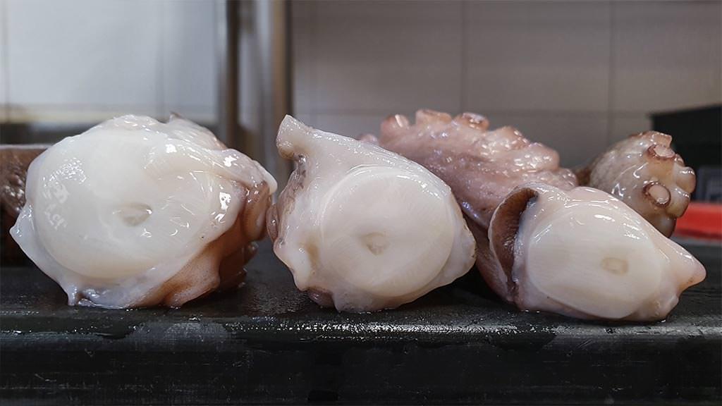 Sezione tentacoli di un polpo crudo